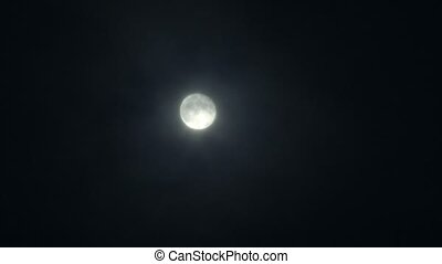Full Moon at Night with out Cloud