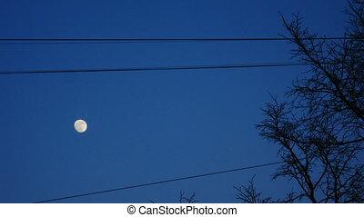 Full moon at sky