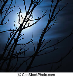 Full moon in foggy dark night, leafless trees silhouettes and clouds, halloween theme background, scary moonlight scenery