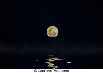 Full moon in the night.