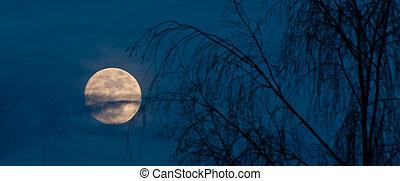 Full moon night scene