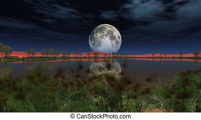 full moon over oasis