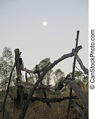 Full moon over rustic fence in rural Alora Andalusia