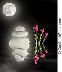 Full Moon Over Zen Garden
