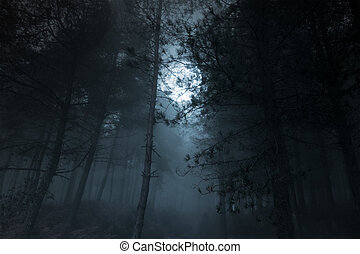 Mysterious foggy full moon pinewood
