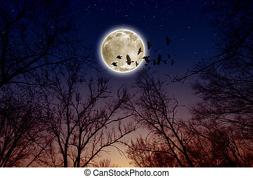 Night sky with full moon, stars, flock of flying ravens, crows. Elements of this image furnished by NASA