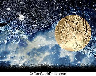 Full  moon - Full moon at winter night in wood.