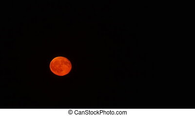 full moon time lapse