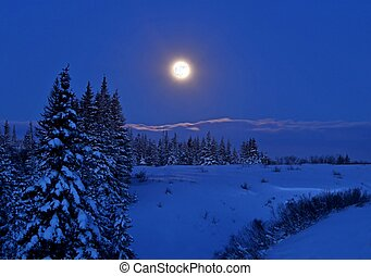 Full moon with snow - Full moon rising over a winter...