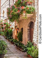 Full of flower streer in small town, Italy, Umbria