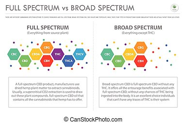Full Spectrum vs Broad Spectrum horizontal business ...