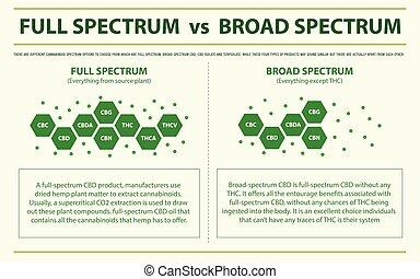 Full Spectrum vs Broad Spectrum horizontal infographic ...