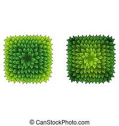 Full square green leaves frame