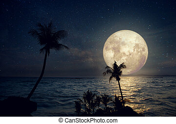 fullmoon and beach