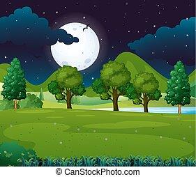 fullmoon, parc, scène, nuit