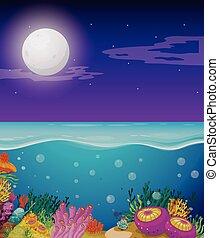 fullmoon, sur, océan, scène, nature