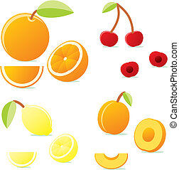 vector fruits with details