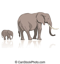 wild elephants - fully editable vector illustration of wild ...