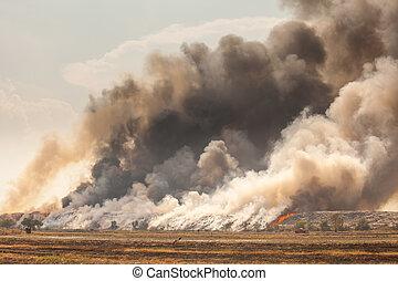 fumée, brûlé, tas, déchets, tas