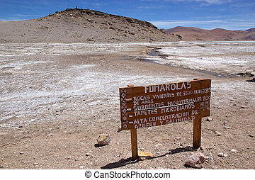 Fumaroles in the Puna de Atacama, Argentina. Puna de Atacama is an arid high plateau in the Andes of northern Chile and Argentina. In Argentina Puna's territory is extended in the provinces of Salta, Jujuy and Catamarca