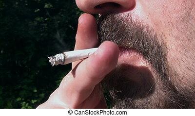 fumer, jardin