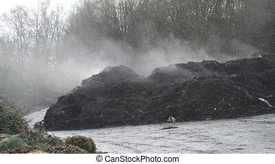 fuming compost heap
