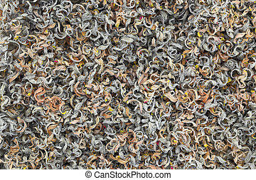 Fun abstract background of pencils shavings