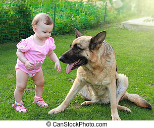 Fun baby looking on big dog on summer green background