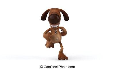 Fun dog running