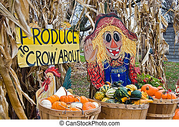 Fun Farm Signs - Farmer market signs with gourds and pumpkin...