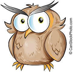 fun owl cartoon on white background