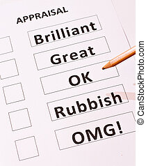 A fun performance appraisal form with an `Oh My God` category