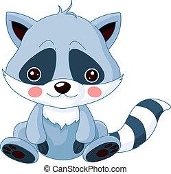 Fun zoo. Raccoon