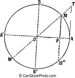función, grabado, vendimia, diagrama, (mathematics), seno
