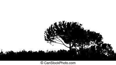 Fund a Tree Desaturation entirely in black and the rest ...