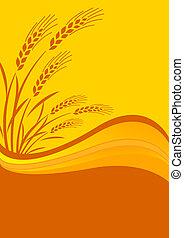 fundo, colheita cereal