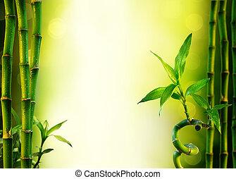 fundo, com, bambu, para, spa
