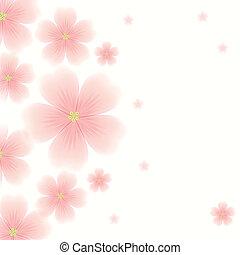 fundo, com, flores côr-de-rosa
