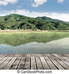fundo, de, natureza, paisagem