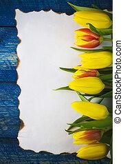 fundo, em branco, vazio, primavera, tulipa, flor, papel, antigas, cartão, madeira