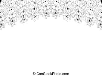 fundo, espaço cópia, wisteria