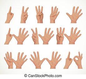 fundo, isolado, dedos, dez, números, branca, um, figuras