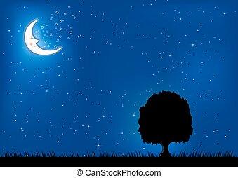 fundo, noturna