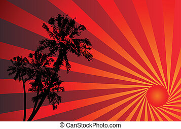 fundo, pôr do sol, tropicais
