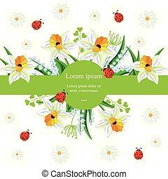 fundo, primavera, feriados, narcissus, vector., ilustrações, flores