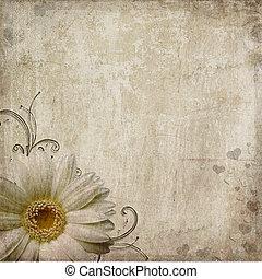 fundo, roto, corações, antigas, flor, vindima