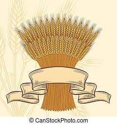 fundo, trigo, amarela, maduro, orelhas