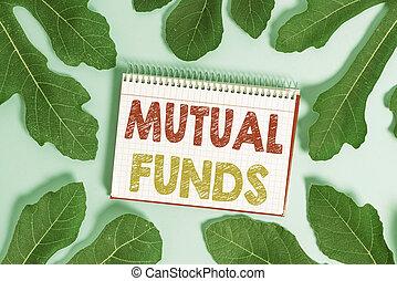 funds., concettuale, altro, o, testo, esposizione, affari, ...