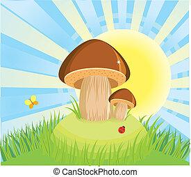 funghi, in, piovere, day.vector, cartone animato, fondo