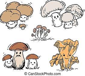 funghi, set